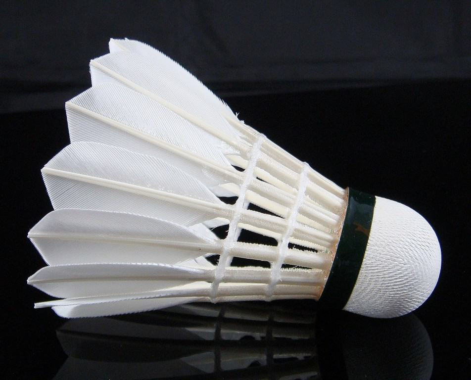 After Badminton Racquet That Comes Is The Shuttlecock Without Which A Game Cant Be Played